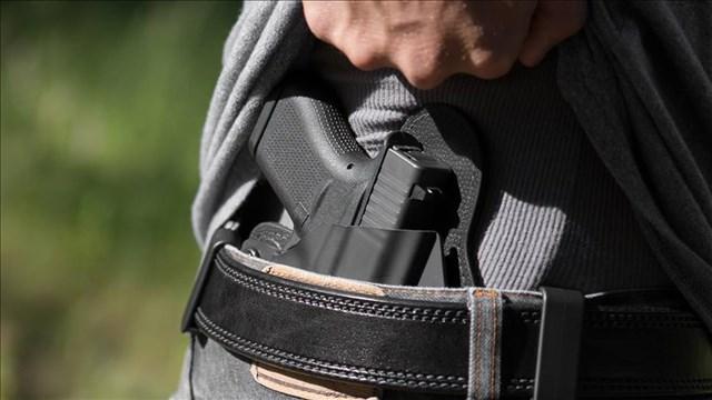 Conceal Carry Gun_1512669848877-794298030.jpg