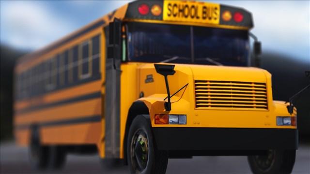 school bus-794306122