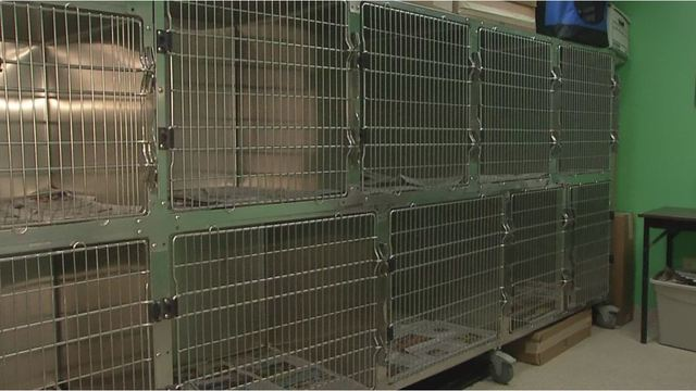 dog cages_1515082991289.jpg-794306122.jpg