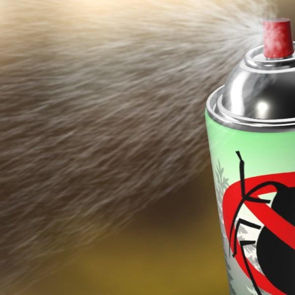 Bug Spray_1521597277503-794298030.jpg