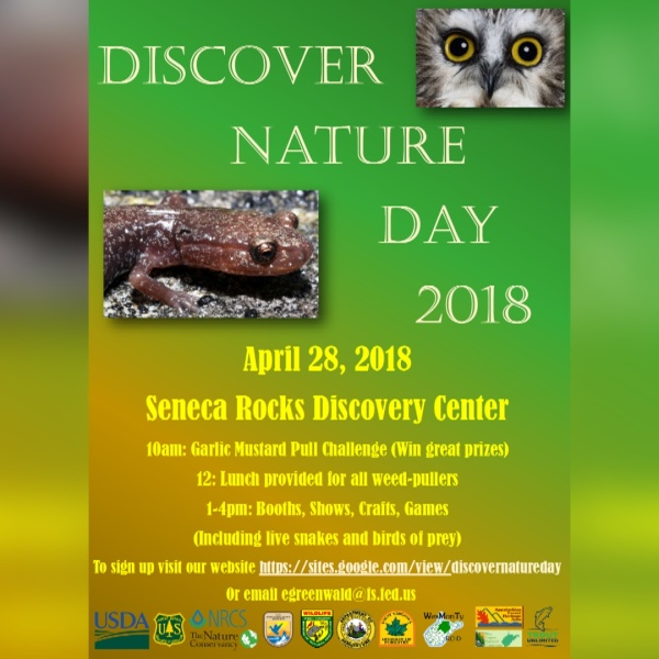 DISCOVER NATURE PREVIEW.jpg
