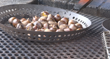 CHESTNUTS_1538950220502.png