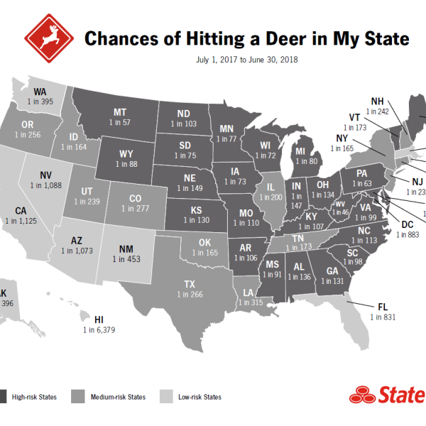 deer map_1538407883855.png.jpg