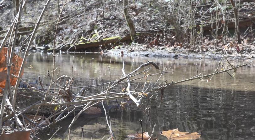 bubbling creek_1551136179398.png.jpg
