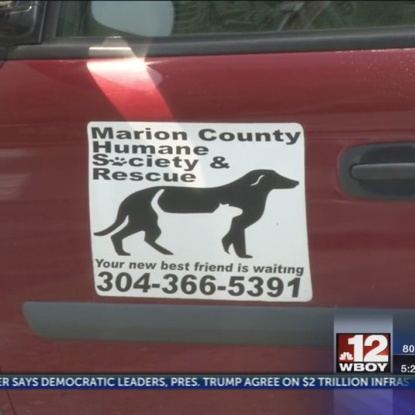 Marion County Humane Society seek new building to better service animals