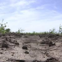 Lawmakers discuss climate change