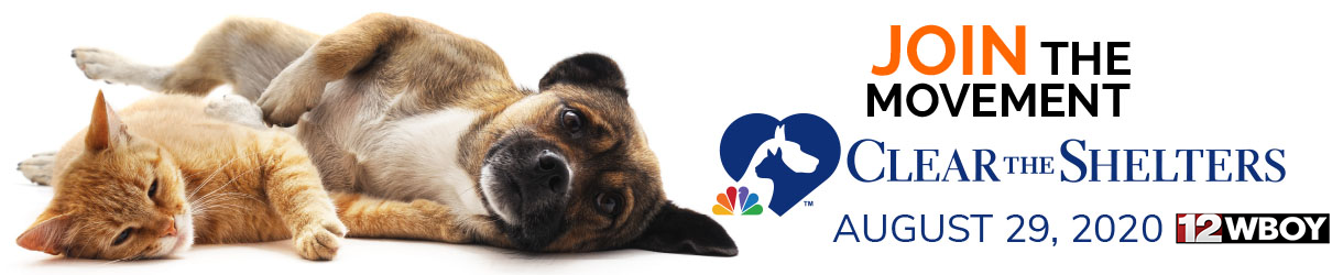 Clear the shelters with WBOY