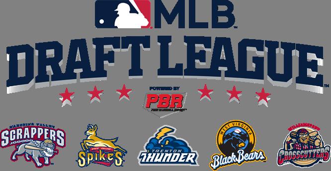 WV Black Bears to join new 'MLB Draft League' | WBOY.com